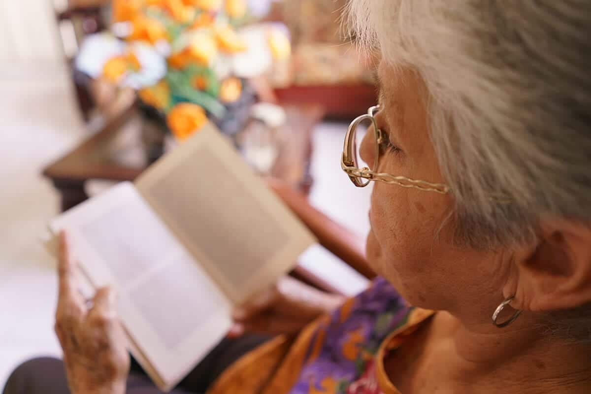 Old Lady Reading Book On Armchair