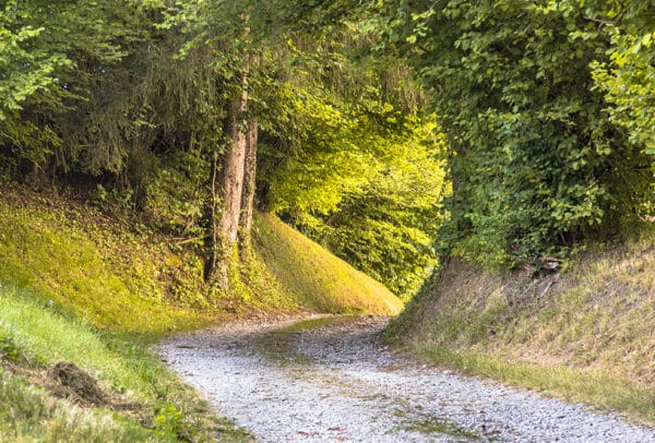 Tunnel of Foliage in unpaved rural road as concept for uncertain future perspective